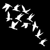 Silhouette of flying birds on black background. Inspirational body flash tattoo ink. Vector.
