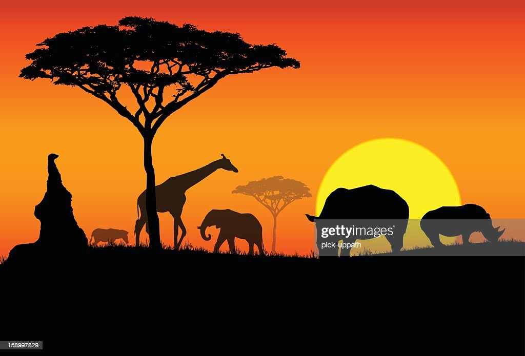 Silhouette of various animals in an African Safari