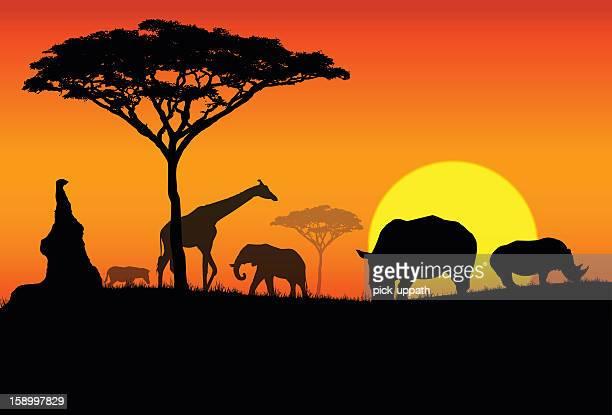 silhouette of various animals in an african safari - safari animals stock illustrations