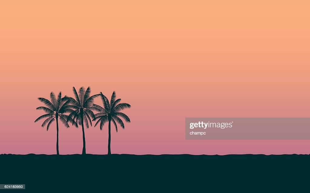 Silhouette palm tree in flat icon design at sunset sky