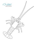 Silhouette spiny lobster. Linear silhouette spiny lobster. Spiny lobster badge for design seafood packaging and market, food packaging or underwater sea animal themed design. Vector illustration.
