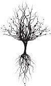 Silhouette Tree and Roots