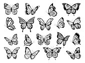 Silhouettes of butterflies. Black pictures of funny butterflies