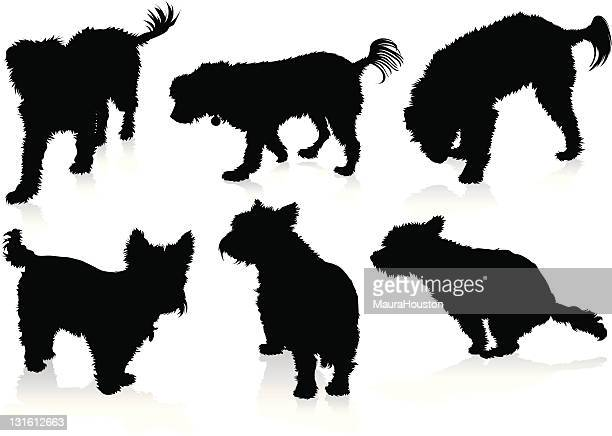 silhouettes of dogs - defecating stock illustrations, clip art, cartoons, & icons