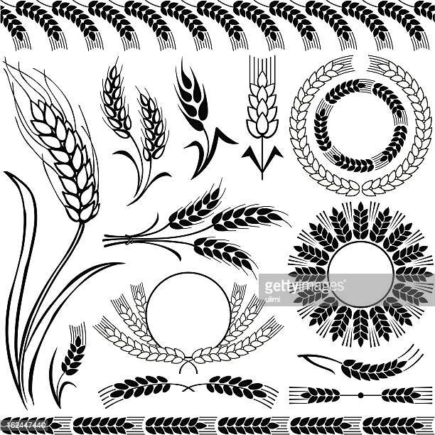 silhouettes of wheat - barley stock illustrations