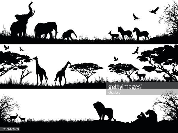 silhouettes set of african wild animals in nature habitats - animal stock illustrations
