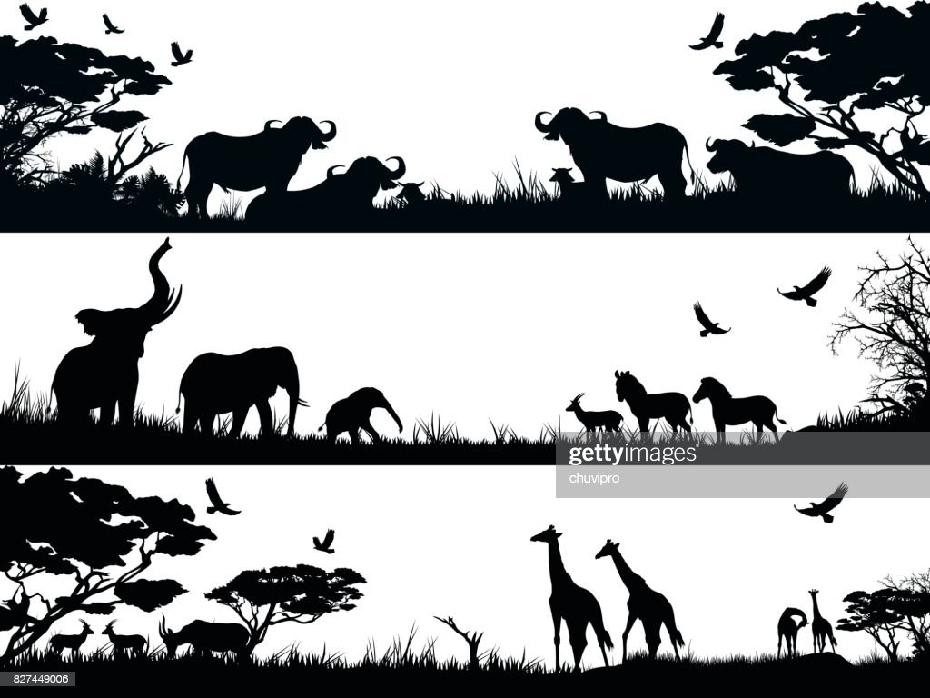 Silhouettes Set Of African Wild Animals In Nature Habitats ...