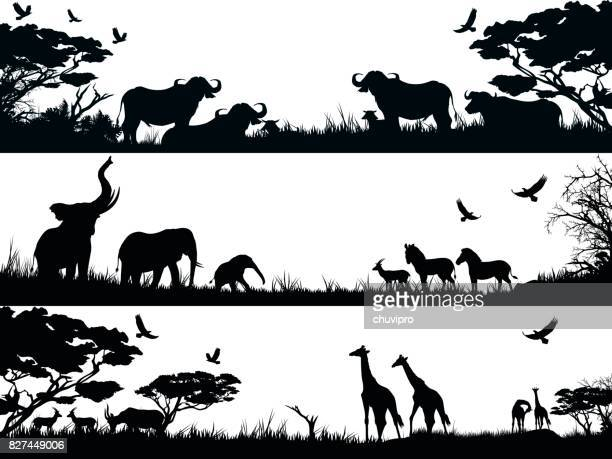 silhouettes set of african wild animals in nature habitats - mammal stock illustrations