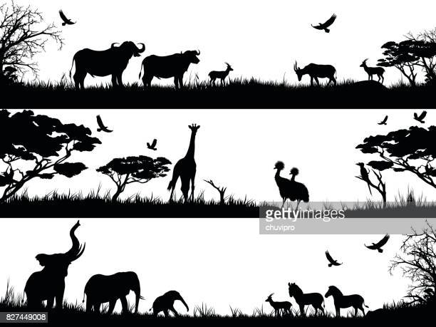 silhouettes set of african wild animals in nature habitats - african buffalo stock illustrations, clip art, cartoons, & icons