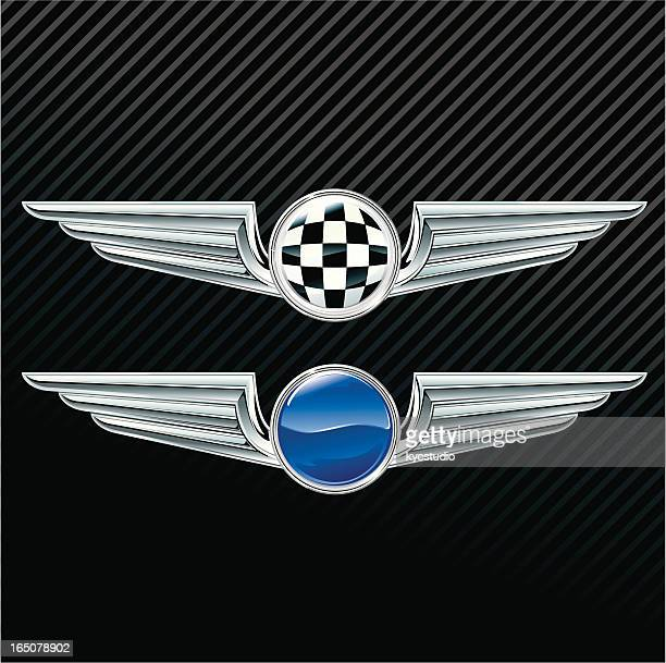 Silver wings - insignia