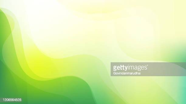 illustrazioni stock, clip art, cartoni animati e icone di tendenza di simple abstract green and yellow color background - colore verde