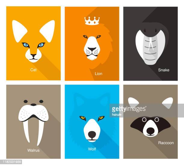 ilustrações de stock, clip art, desenhos animados e ícones de simple animal portrait, flat vector illustration - animals in the wild