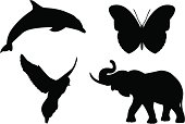 Simple animals shapes