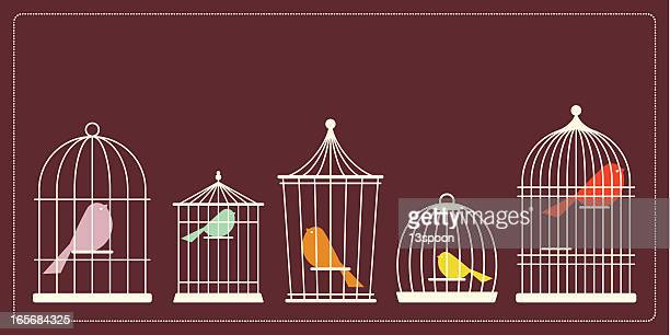 simple bird cages - birdcage stock illustrations, clip art, cartoons, & icons
