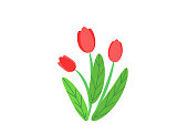 Simple bouquet vector with spring garden blooming flowers illustration. Fashion floral springtime nature plant elements isolated on white background in minimal style