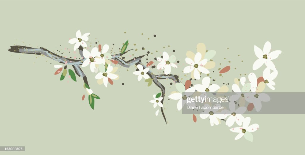 Simple Cherry Blossoms Branch