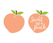 Simple Cute Peach with Leaves Vector Illustration