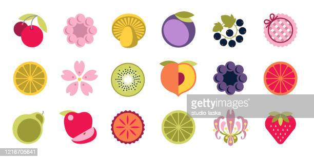 Blackcurrant Stock Illustrations Getty Images
