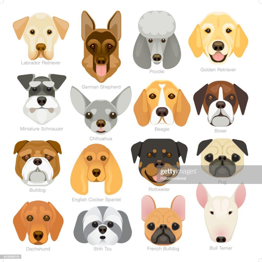 conjunto de iconos de razas de perro popular gráfico simple : Ilustración de stock