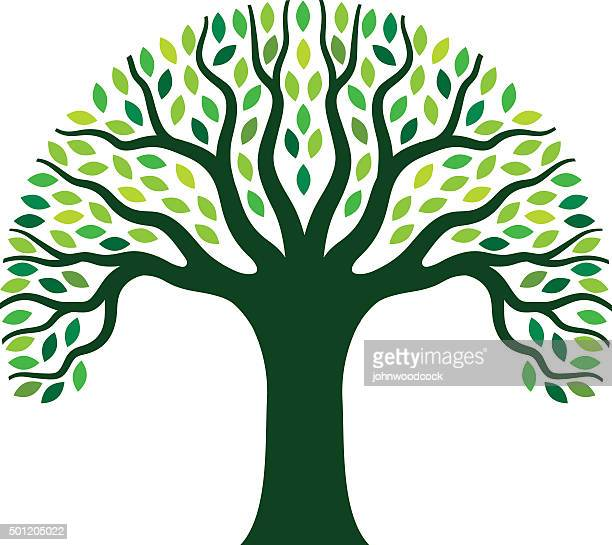 simple graphic tree illustration - tree trunk stock illustrations, clip art, cartoons, & icons