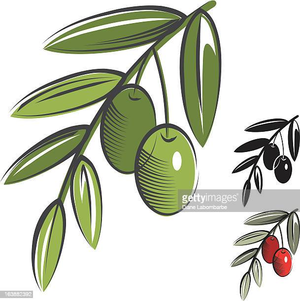 simple olives icon - olive tree stock illustrations, clip art, cartoons, & icons