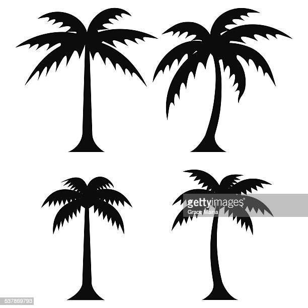simple palm trees - vector - coconut palm tree stock illustrations, clip art, cartoons, & icons