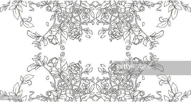 ilustraciones, imágenes clip art, dibujos animados e iconos de stock de simple jardín de rosas e ilustraciones blanco y negro - enredadera