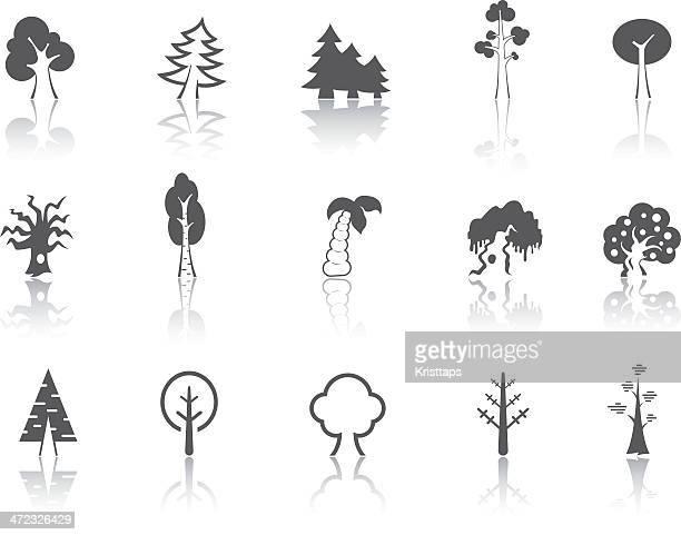 Simple série-arbres