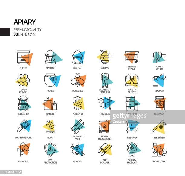 simple set of apiary related spotlight vector line icons. outline symbol collection. - pollination stock illustrations