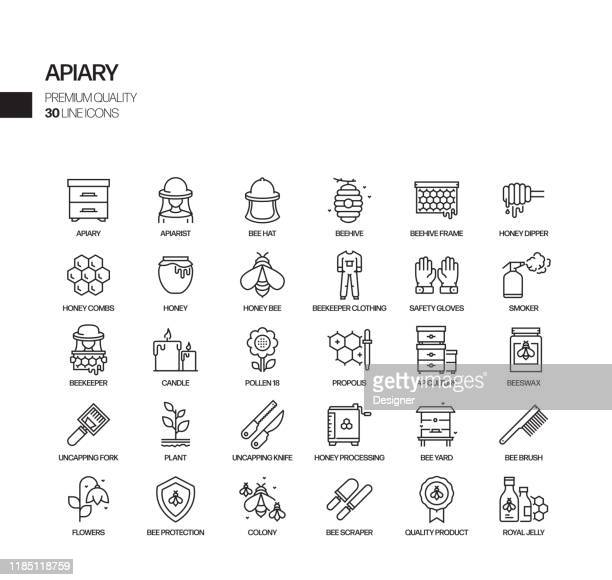 simple set of apiary related vector line icons. outline symbol collection. - pollination stock illustrations