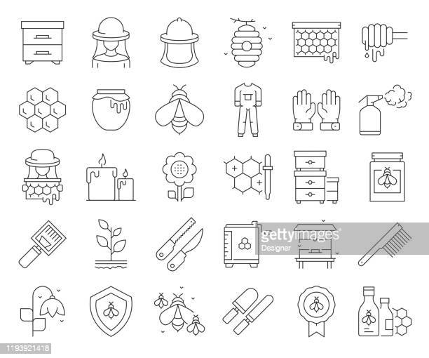 simple set of apiary related vector line icons. outline symbol collection. editable stroke - pollen stock illustrations
