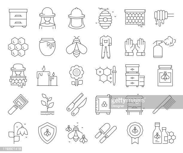 illustrations, cliparts, dessins animés et icônes de ensemble simple d'icônes de ligne vectorielle connexes apiaires. collection de symboles de contour. accident vasculaire cérébral modifiable - ruche