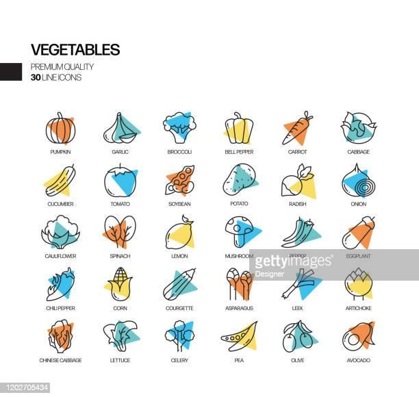 野菜関連スポットライトベクトルラインアイコンの簡単なセット。アウトラインシンボルコレクション。 - 熟した点のイラスト素材/クリップアート素材/マンガ素材/アイコン素材