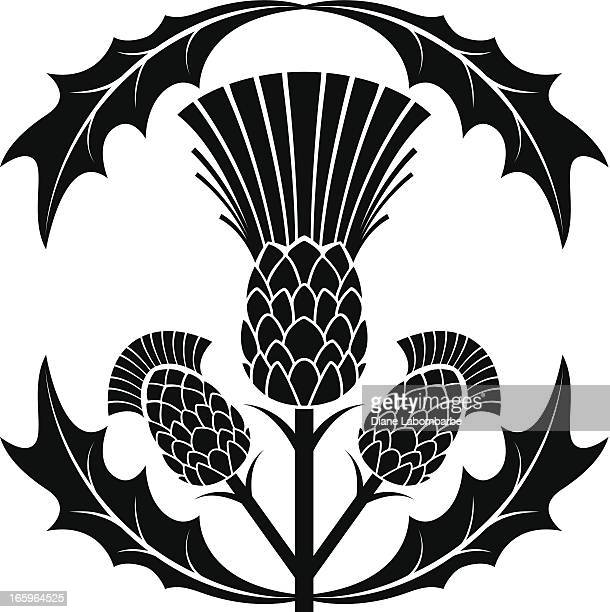 simple thistle silhouette vector illustration - thistle stock illustrations, clip art, cartoons, & icons
