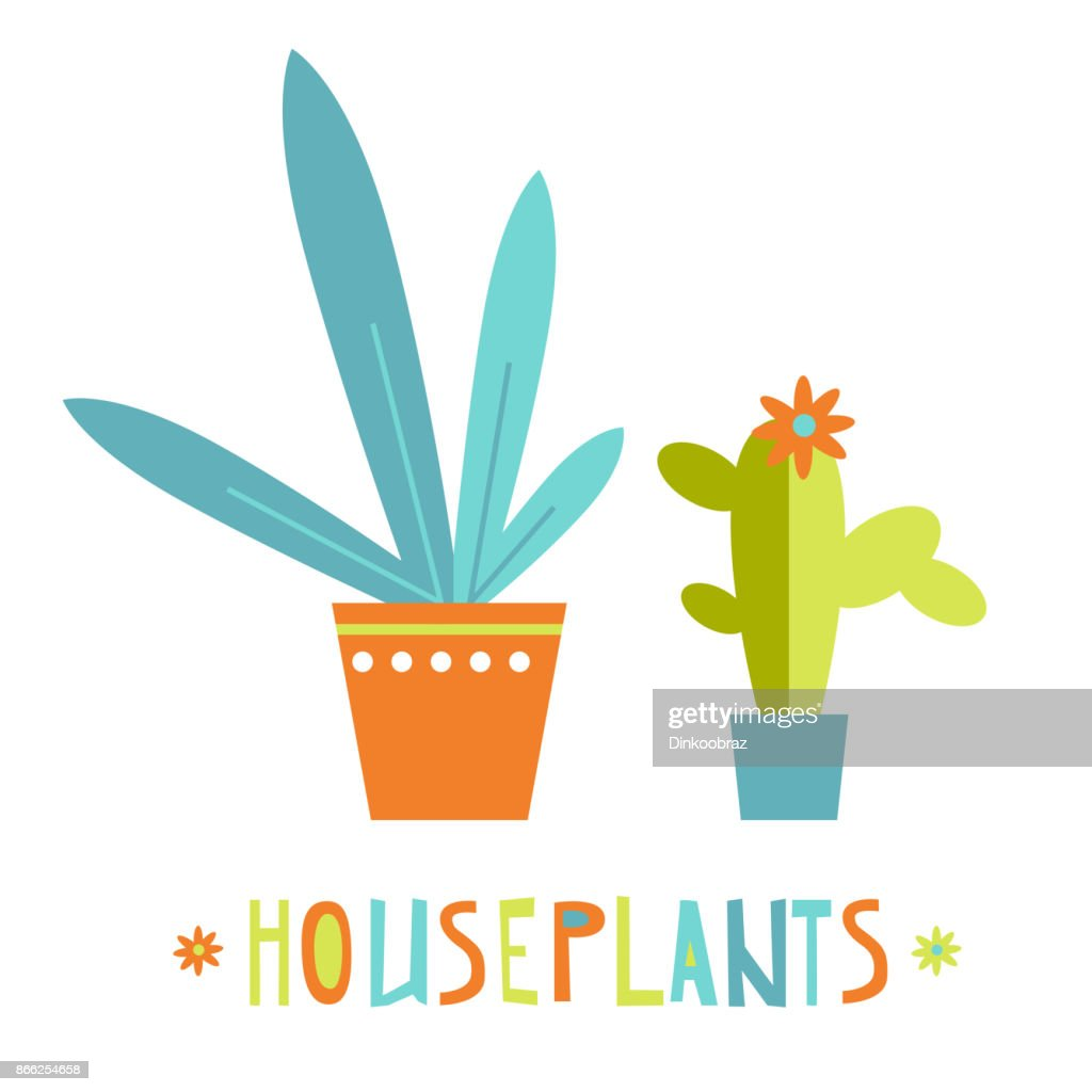 Simple vector bright flat houseplants. Succulent and leaves. Gre