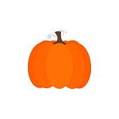 Simple vector of an orange halloween pumpkin and brown trunk.
