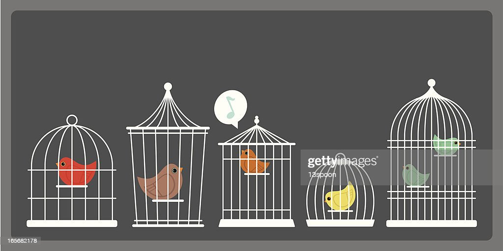 Simple White Birds Cages