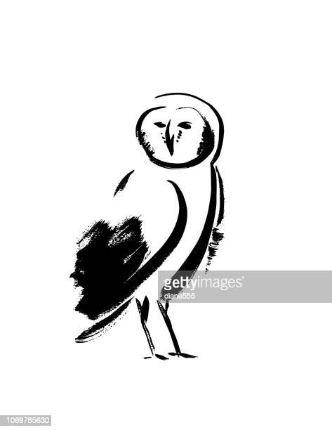 simplistic brush paintings of an owl - owl stock illustrations