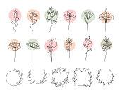 Single line flowers set