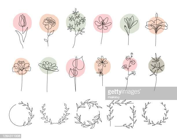 single line flowers set - line art stock illustrations