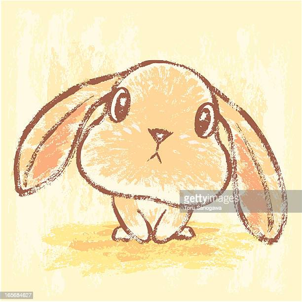 illustrations, cliparts, dessins animés et icônes de lapin salon - lapereau