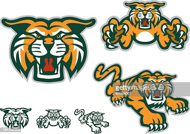 six versions of a tiger mascot, three with orange coloring - wildcat animal stock illustrations, clip art, cartoons, & icons
