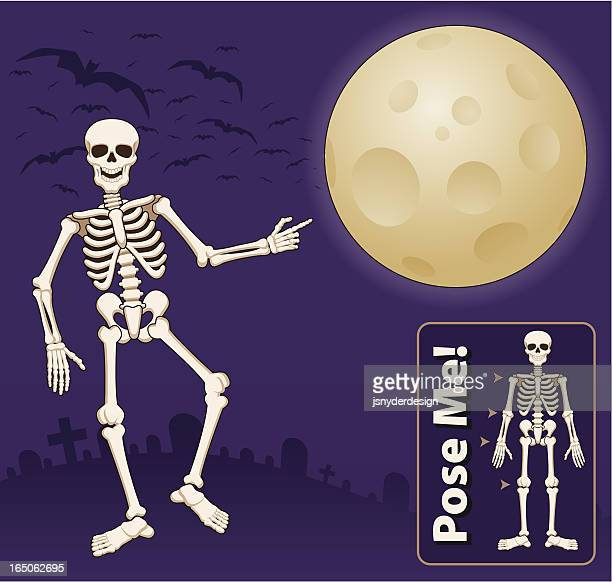 ilustraciones, imágenes clip art, dibujos animados e iconos de stock de esqueleto de fondo - esqueleto humano