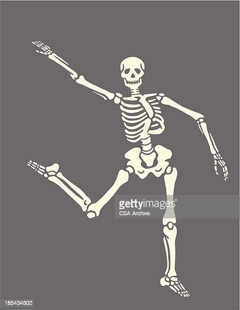 ilustraciones, imágenes clip art, dibujos animados e iconos de stock de baile de skeleton - esqueleto humano