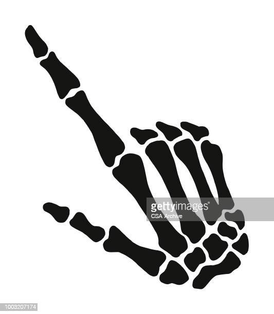 ilustraciones, imágenes clip art, dibujos animados e iconos de stock de esqueleto de mano - esqueleto humano