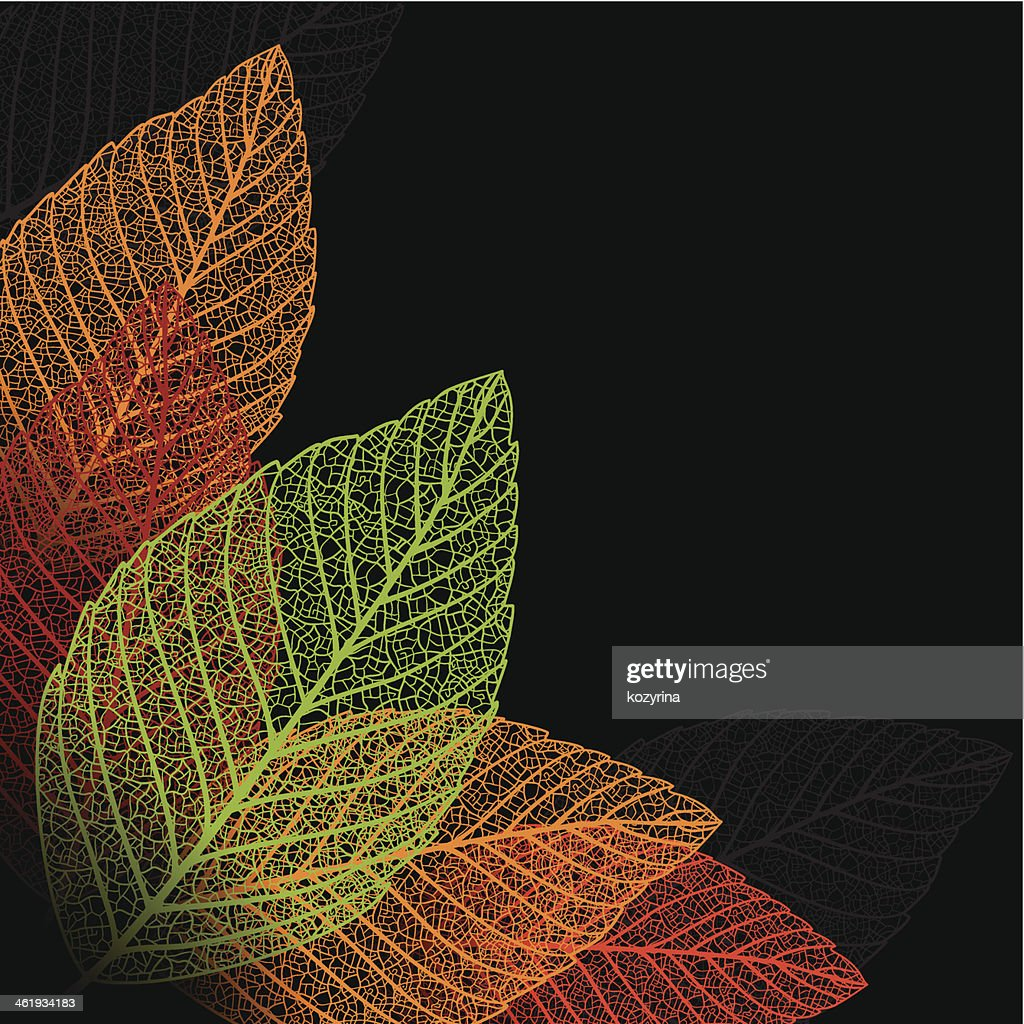 Skeleton leaf background.