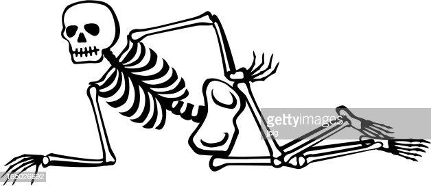 Bones of Arm | ClipArt ETC