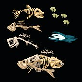 Skeletons fish, track and other items