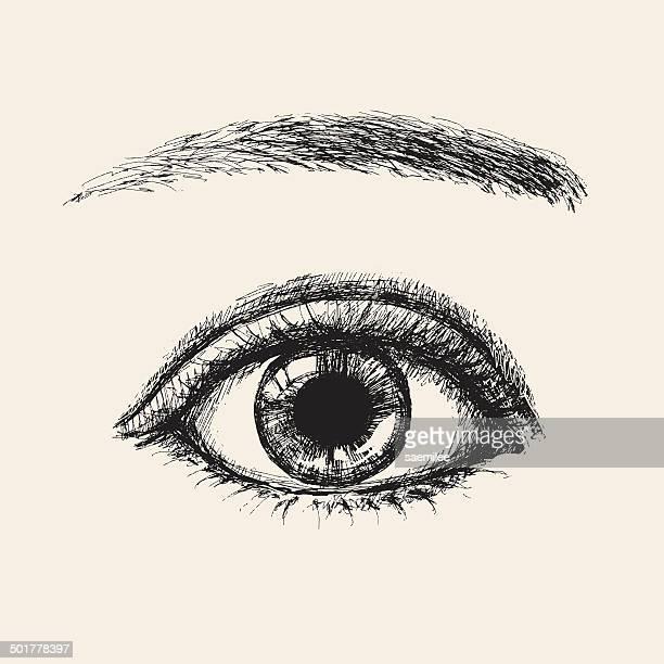 sketch eye - human eye stock illustrations