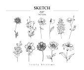 Sketch Floral Botany set.